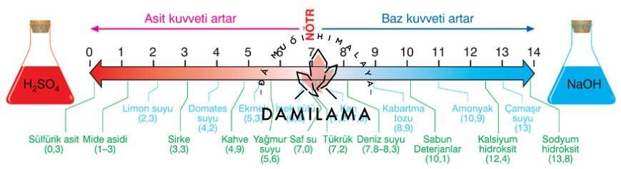 Hình ảnh Đá Muối Hồng Himalaya - Những Điều Bí Ẩn Trong Spa chính hãng tốt giá rẻ nhất tại DamiLama
