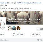 DAMILAMA – Đá Muối Khoáng Himalaya 100% Nguyên Chất Nhập Khẩu Trực Tiếp Từ Pakistan (Không Qua Trung Gian) 59 2020